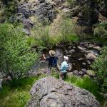 Small Stream, AZ