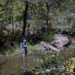 08_west_oak_creek_copyright2012_michelle_mason-smith