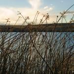 15_becker_lake_copyright2012_gentry_smith