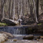 horton_creek_copyright_2013_gentry_smith_03