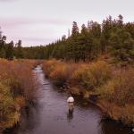 East Fork Black River