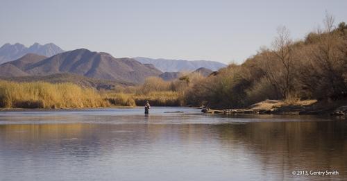 Manuscripts fishbum for Lower salt river fishing